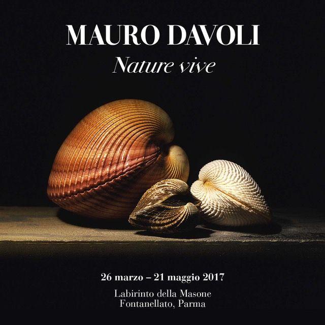 """""""Mauro Davoli. Nature vive"""" mostra alla Magione - Fontanellato (PR)"""