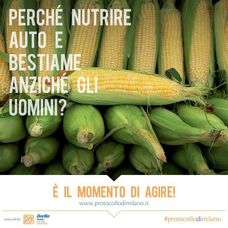 BCFN: Protocollo di Milano