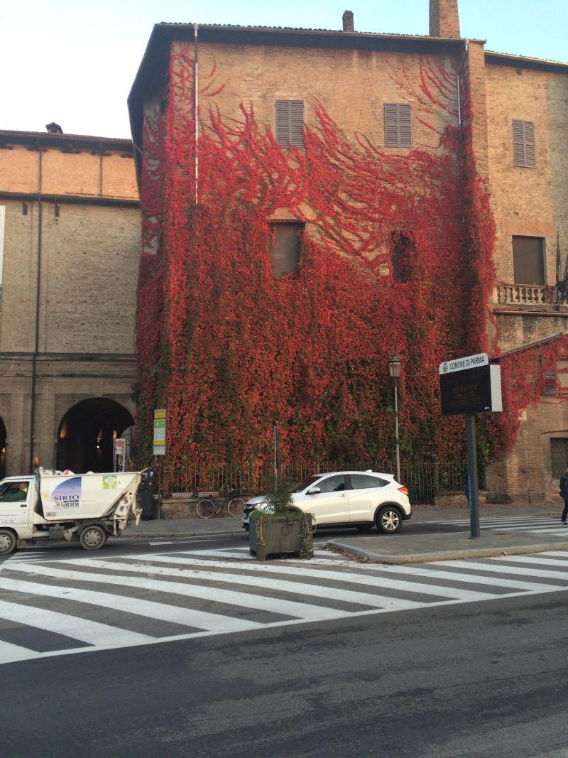 Foto Augusto Vignali: La facciata della Pilotta di Parma come era con l'edera canadese rossa