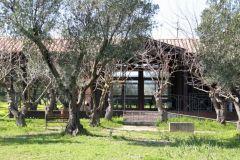 borgopiazza2marzo2011 231