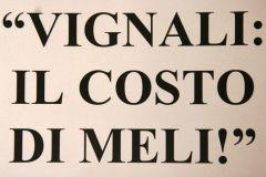 vignalimeli01