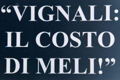 vignalimeli02