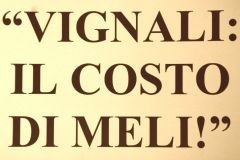 vignalimeli04