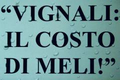 vignalimeli05