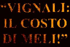 vignalimeli07