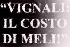 vignalimeli08