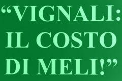 vignalimeli10